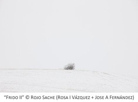 FRIDO_Rojo_Sache_02